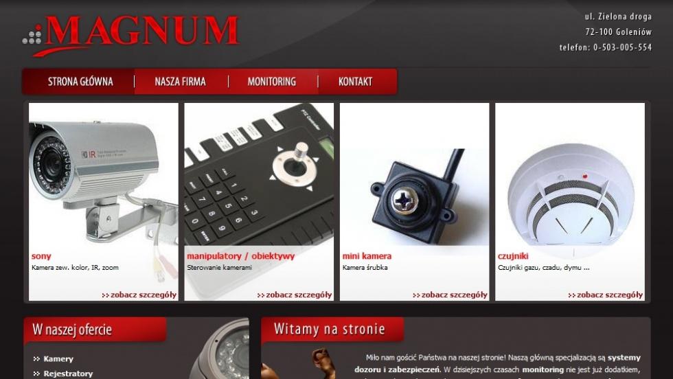 strony internetowe - podląg dla Magnum - monitoring, kamery nr 2